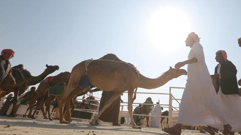 المهرجان نجح في التعريف بالتراث الإماراتي وتسليط الضوء عليه عالمياً بوصفه جزءاً من التراث العربي غير المادي. من المصدر