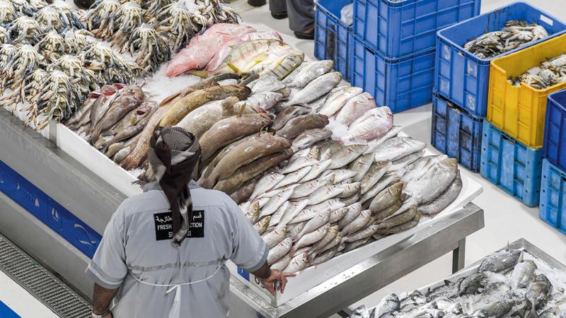 أسعار الأسماك بدأت تسجل تراجعاً تدريجياً منذ بداية يناير 2019. تصوير: أشوك فيرما