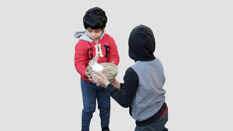 يخصص المهرجان للأطفال حديقة للحيوانات الأليفة. من المصدر