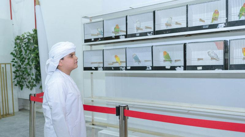 المبادرة تتضمن فعاليات تهدف إلى تعريف المجتمع بطيور الحب وأنواعها. الإمارات اليوم