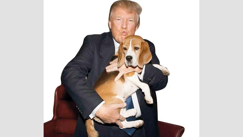 عدم الارتياح يبدو على وجه ترامب أثناء إمساكه بكلب.  غيتي