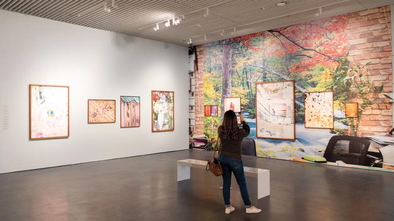 المعرض ضم مجموعة من الرسومات والمطبوعات حول المساحات والمناظر الطبيعية وعلم الجماليات. تصوير: أحمد عرديتي