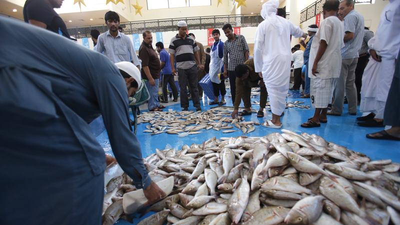 الحكومة تعمل على أن تكون الإمارات ضمن أفضل 10 دول في مؤشر الأمن الغذائي بحلول 2021. تصوير: مصطفى قاسمي