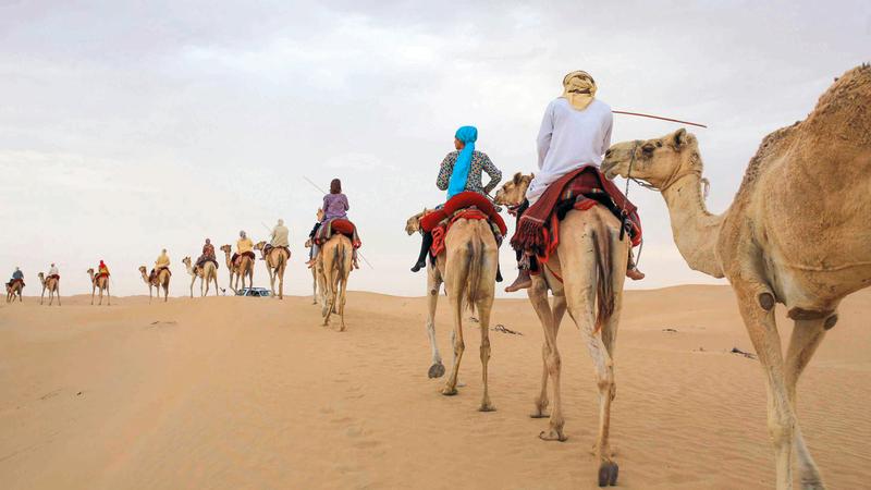 القبائل العربية مع قوافلها التجارية