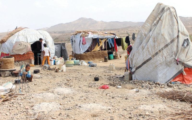 الصورة: بالفيديو.. حجور.. مأساة إنسانية وإبادة جماعية