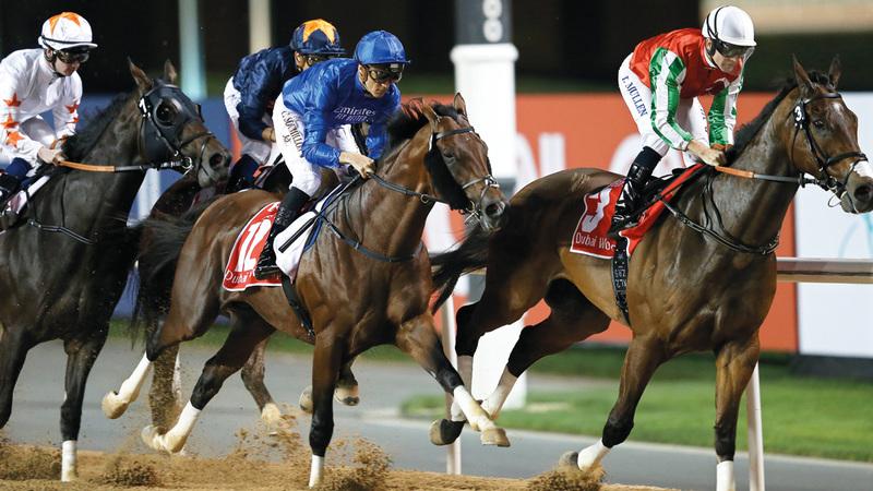 خيول الإمارات حققت 5 انتصارات في الأمسية الـ24 من كأس دبي العالمي. إي.بي.إيه