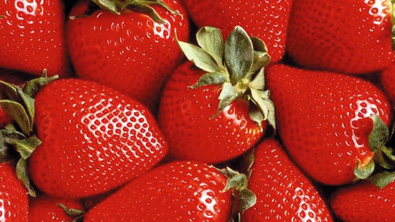 الفاكهة التي تزرع في الدولة تنتسب إلى 14 عائلة. من المصدر