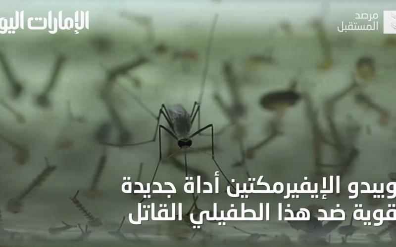 """الصورة: بالفيديو.. تعرف إلى """"إيفيرمكتين"""" قاتل الملاريا الجديد"""