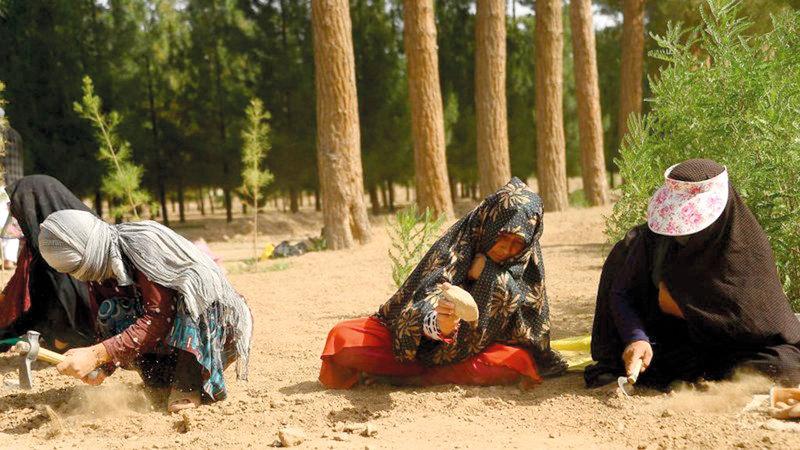 نساء أفغانيات يعملن في زراعة أحد المتنزهات. أ.ف.ب