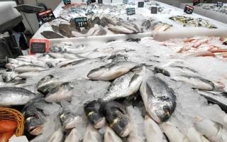«الأسماك» تخفّض أسعار الطعام   والمشروبات في دبي 0.01%
