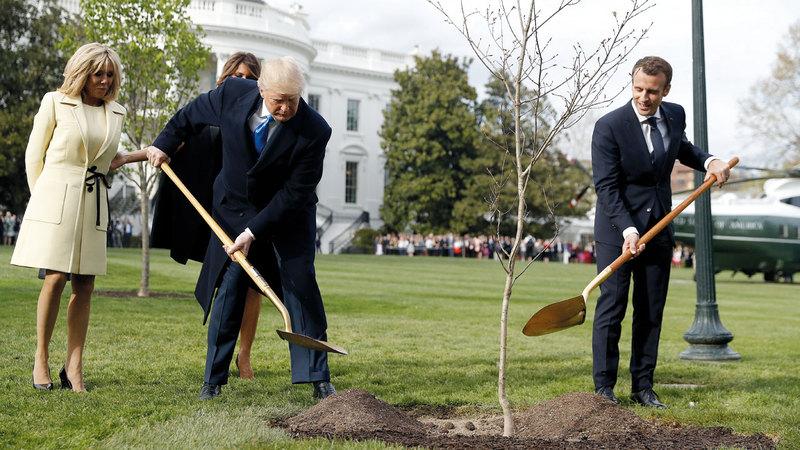 الزعيمان وهما يطمران الشجرة بالتراب بعد زراعتها.  إيي.بي.إيه