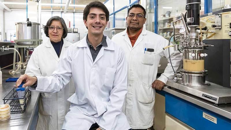 خافيير لاراجويتي في مختبره يعمل على تطوير بديل للسكر.  أرشيفية