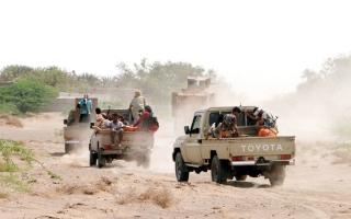 عمليات عسكرية واسعة للقوات المشتركة في الضالع.. وإفشال هجوم حوثي بالحديدة