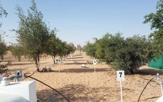 «بيئة أبوظبي» تراقب تلوث التربة عبر 170 موقعاً