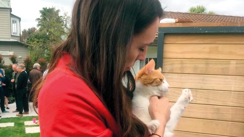 جاسيندا أرديرن تدلل قطتها.  غيتي