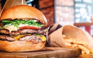الصورة: خبراء في «زايد الدولية للبيئة»: تغليف الطعام يُلوّثه ويُهدّد الصحة