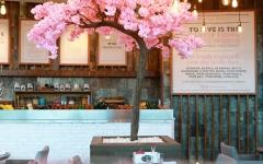 """الصورة: """"ماريوت"""": حسومات تصل 30% ضمن 200 مطعم مشارك في الإمارات"""