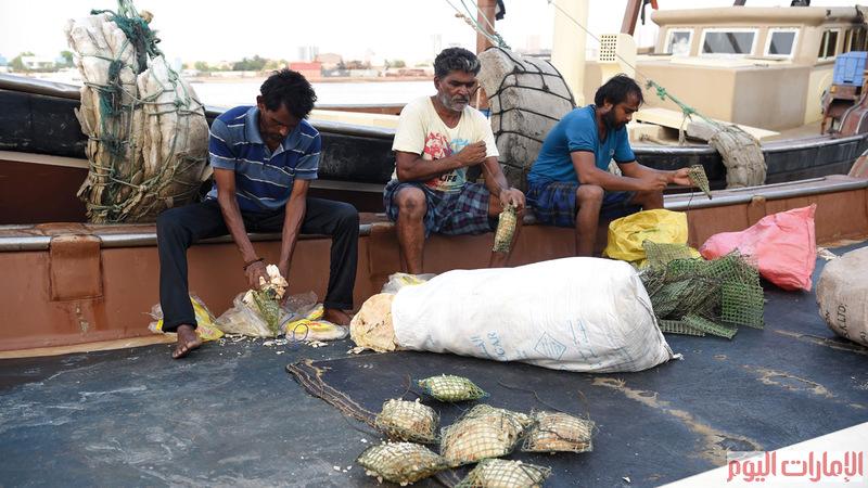 تستغرق عملية الصيد بالقرقور من أربعة إلى خمسة أيام، على عكس الصيد بالشباك.