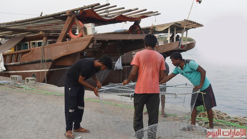القراقير هي إحدى أقدم طرق الصيد في الإمارات، ولايزال الكثير من الصيادين يمارسون هذا التقليد، ويأتي القرقور بأحجام مختلفة. و تصوير: أسامة أبوغانم