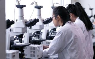 الصورة: 7 مجالات علمية لمِنَح الباحثين اليافعين في أبوظبي