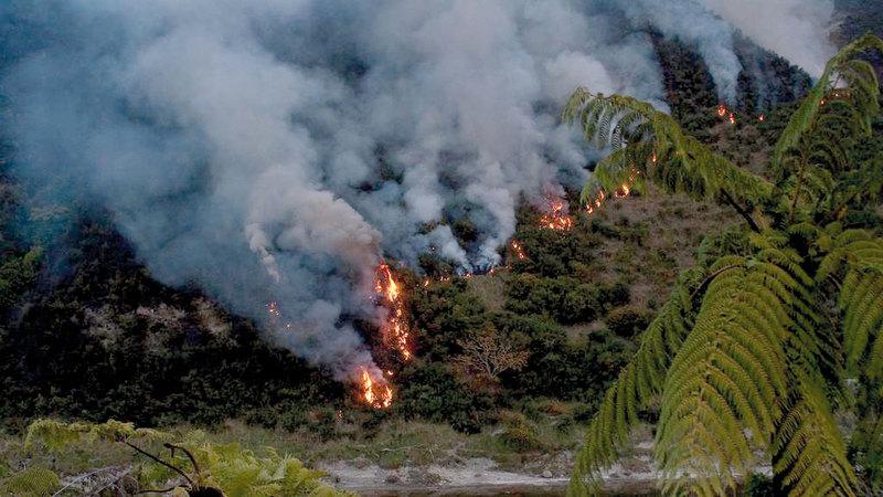 غابات الأمازون المطيرة، أحد أهم حوائط الصد بالعالم أمام تغير المناخ. ارشيفية