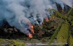 الصورة: رئيس البرازيل يتهم دون دليل المنظمات الأهلية بإحراق الأمازون
