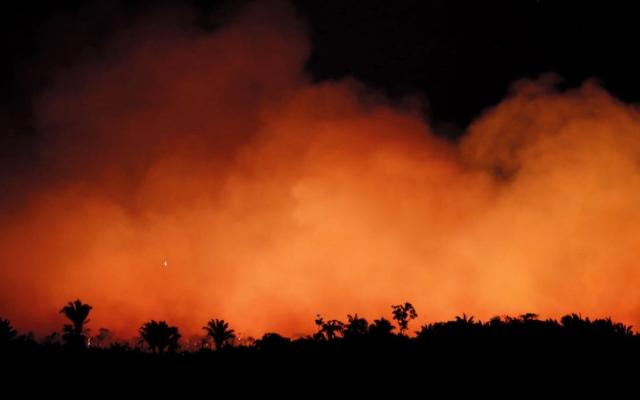 الصورة: ميركل: ماكرون كان محقاً عندما قال «بيتنا يحترق»