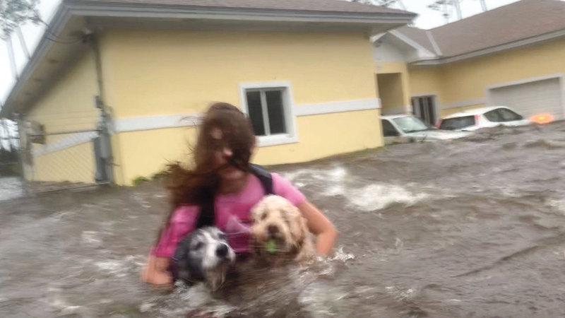 ناجية تصطحب كلبيها خلال إنقاذها. أ.ب
