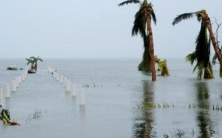 الصورة: بالصور.. آثار الدمار التي ألحقها إعصار دوريان بجزر الباهاما