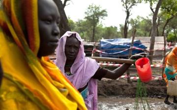 الصورة: السودان: وفاة 3 حالات بالكوليرا