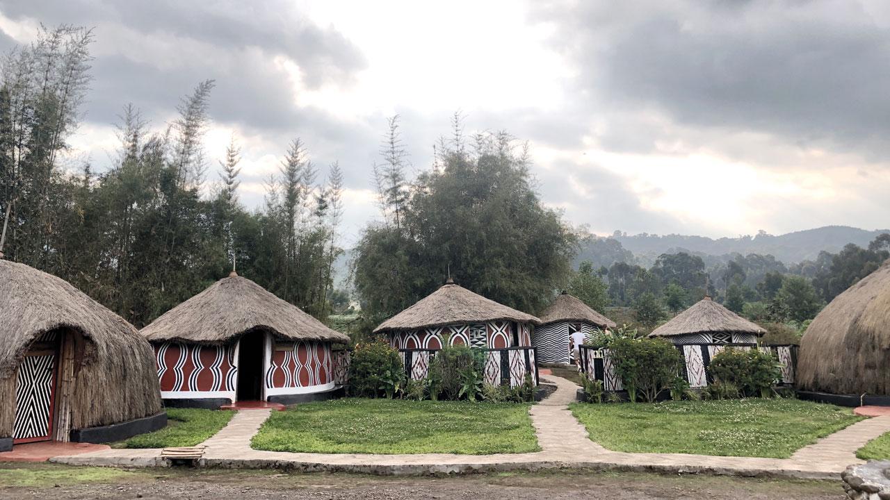 البيوت التقليدية