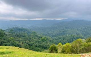 الصورة: رواندا.. أيقونة السياحة في القارة الإفريقية