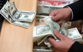 الصورة: استقرار في أسعار الدولار بالبنوك المصرية