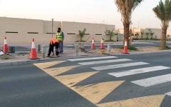 الصورة: لقطة: ردّ من «طرق دبي»