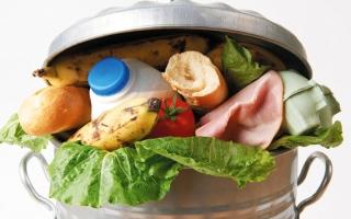 الصورة: «البيئة» تحد من هدر الغذاء في المدارس بـ «معاً»