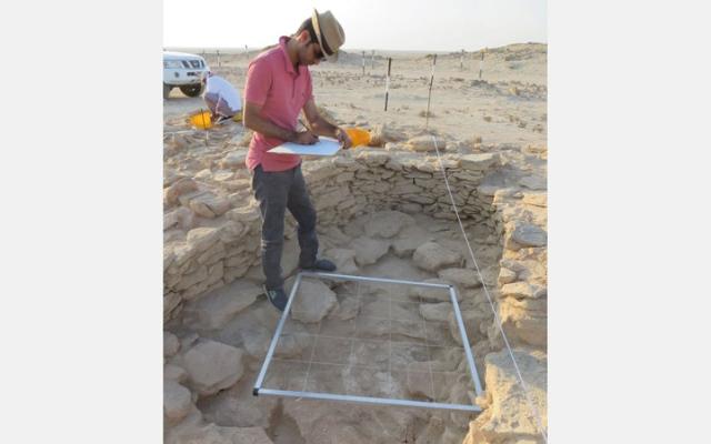الصورة: اكتشاف أقدم لؤلؤة طبيعية في العالم في جزيرة مروّح بأبوظبي