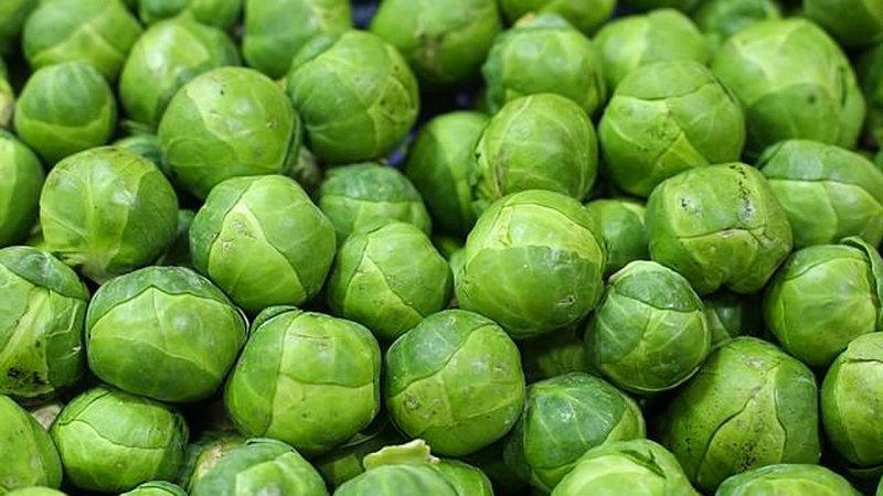 قلة عمال القطاف لم تؤثر  في التفاح فحسب وإنما في الخضراوات أيضاً. أرشيفية
