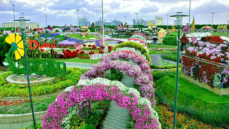 «دبي ميراكل جاردن» تقدم دورة جديدة بمجموعة من الأعمال الفنية الجديدة المستوحاة من الزهور. من المصدر