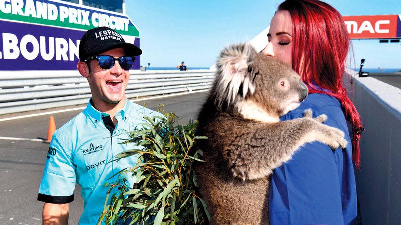 حيوان الكوالا مألوف لدى الجمهور. أ.ف.ب