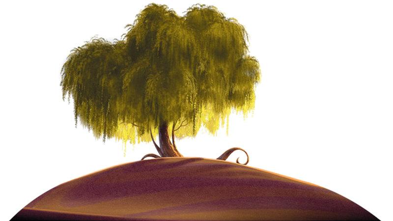 شجرة الغاف الحكيمة «سلامة». من المصدر