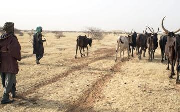 الصورة: 45 مليون نسمة مهددون بانعدام الأمن الغذائي بسبب الجفاف