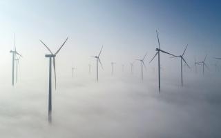 """الصورة: تعرف إلى أبرز المنافع الاقتصادية للفوز بمعركة """"المناخ"""""""