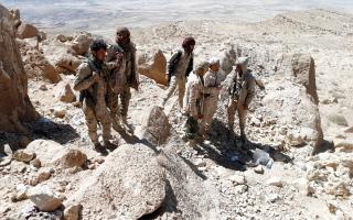 الصورة: الجيش اليمني يحرر سلسلة جبــال صبرين وأم الحجار في الجوف