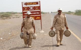 الصورة: «مسام» ينتزع 103 آلاف لغم في اليمن