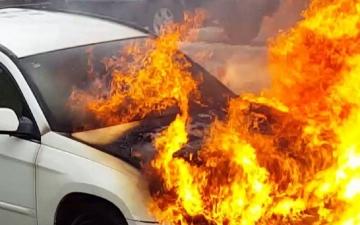 الصورة: رجل يشعل النار في زوجته داخل سيارة