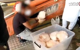 الصورة: شرطة أبوظبي تحبط ترويج 450 كيلوغرام مخدرات   في عملية «شبكة الموت»