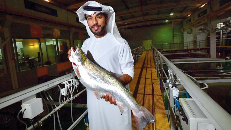 بن مبارك قال إن الإمارات تستورد 92% من أسماكها من الخارج. أ.ف.ب