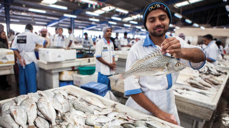 «الشركة» تلزم التجّار بشراء الثلج منها بالسعر الذي تحدّده. الإمارات اليوم