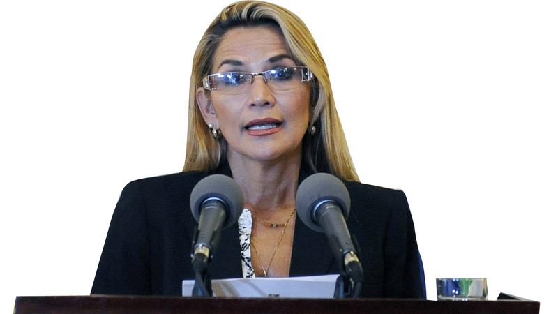 جانين آنيز قالت إنها رئيسة انتقالية حسب الدستور. أ.ف.ب