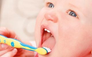 الصورة: طبيبة ألمانية: تنظيف أسنان الأطفال بمجرد بزوغها